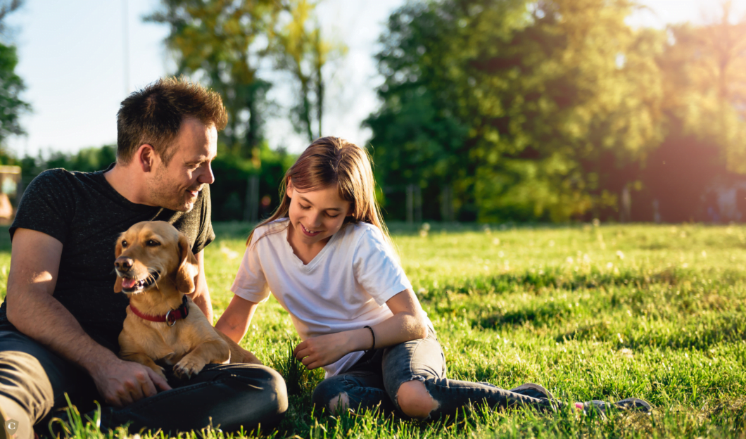 Your Guide To Child Maintenance Trust (3)